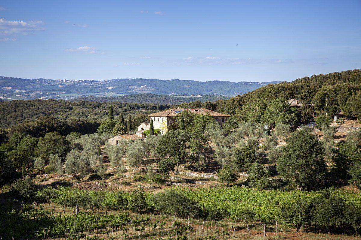 Organic Farm in Tuscany